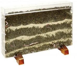 Beobachtungskasten für Regenwürmer
