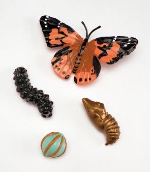 Lebenszyklus - Figuren: Entwicklung des Schmetterlings