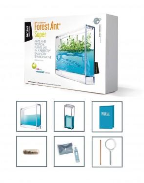 Das Forest - Ant Ecoterrarium
