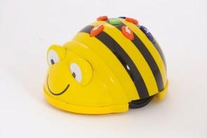 BeeBot- Bodenroboter