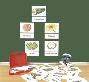 """Bilder- und Wortkarten """"In the garden"""""""
